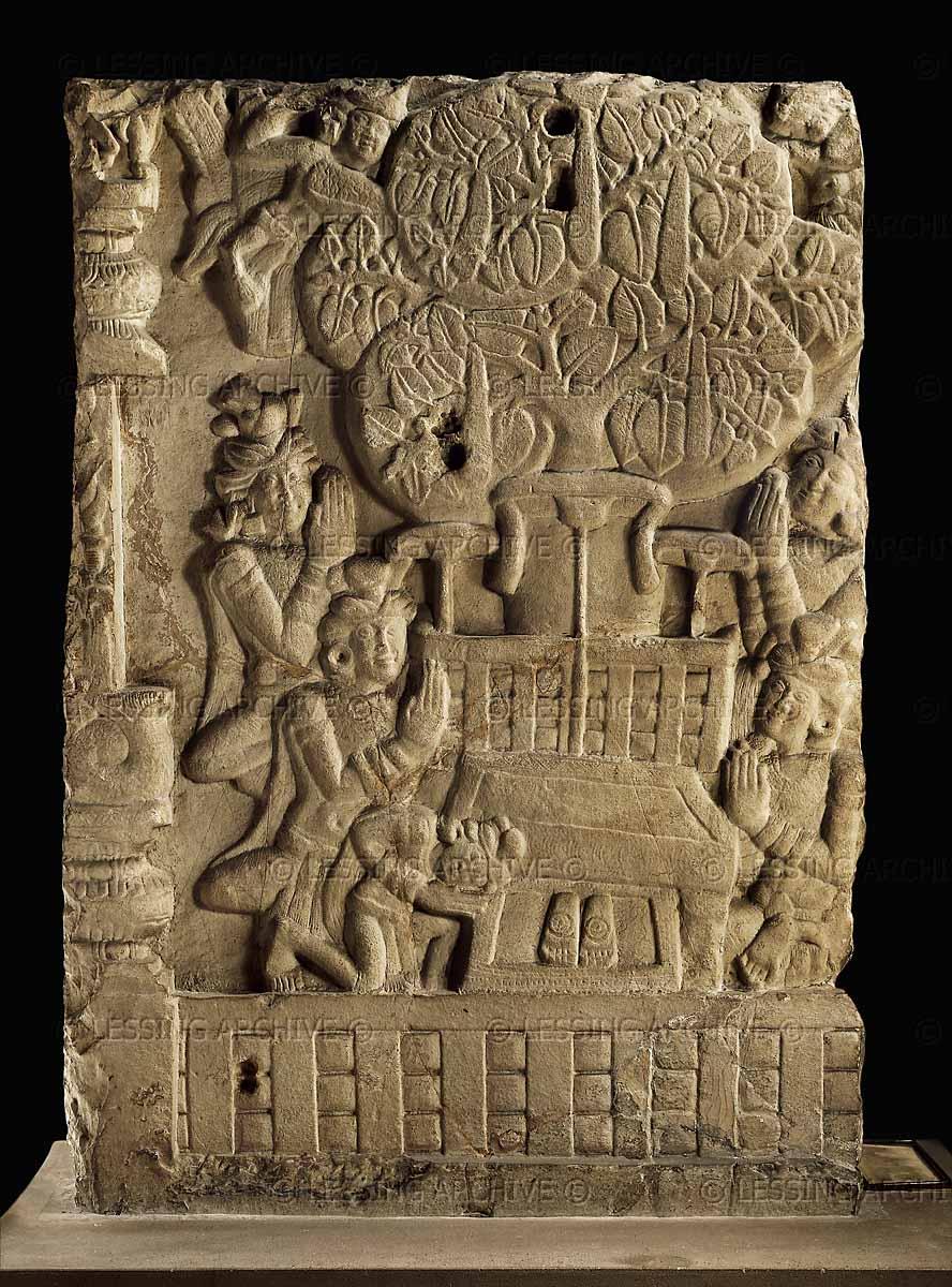 Frontiers Of Anthropology Mushroom Mythology 3